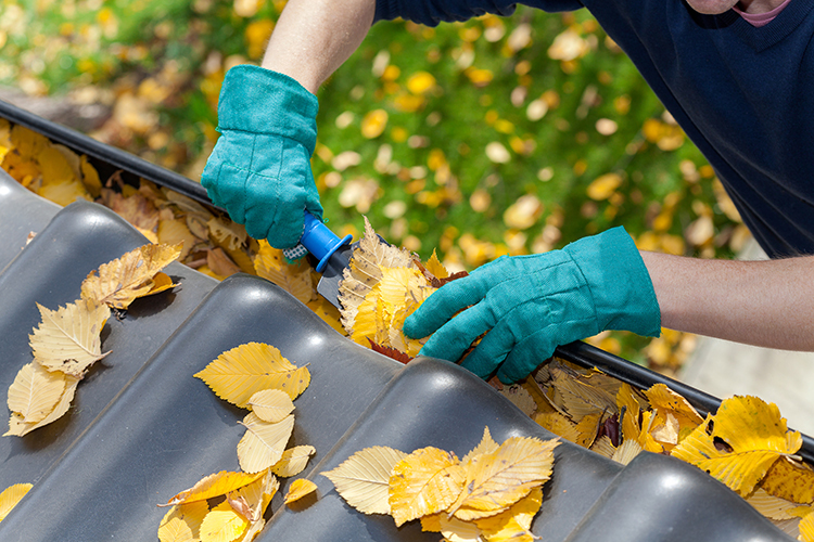 gutter cleaning service MA